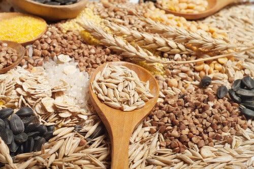 콩류와 곡식들