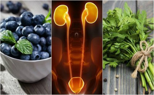 7 Foods that Protect Your Kidneys and Bladder