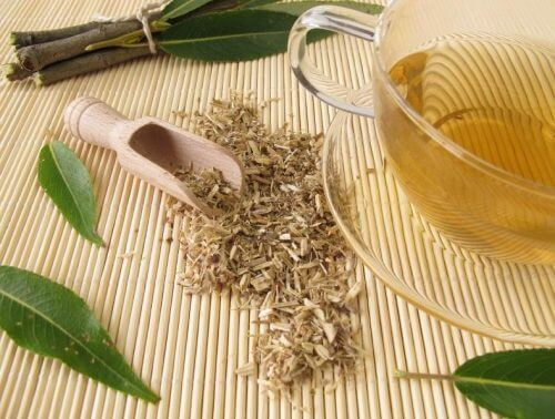 White willow tea