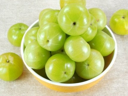 amla fruit as omeprazole alternatives
