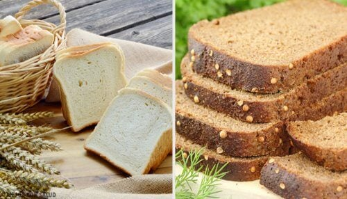 White Bread or Whole Grain Bread: Which is Better?