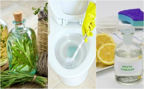 5 Eco-Friendly Bathroom Disinfectants