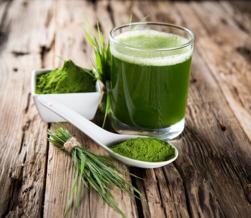 Green water with spirulina powder and herbs