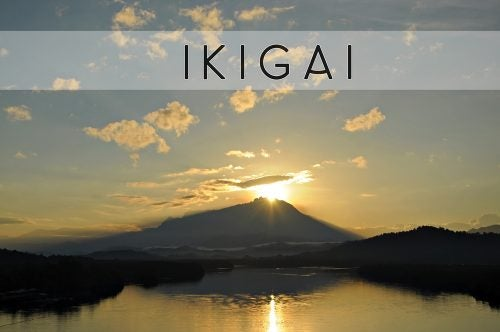 Read About Ikigai, the Japanese Secret to Better Living
