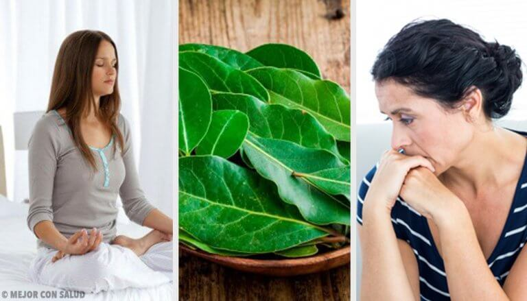 7 Things You Didn't Know that Laurel Leaves Do for Your Health