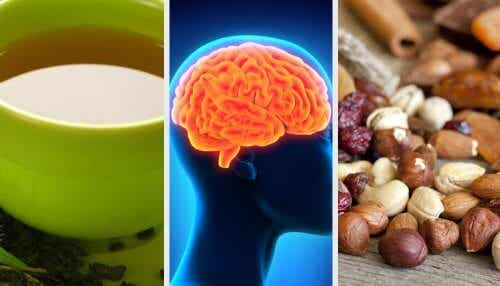What to Eat to Improve Your Memory and Tips to Stimulate Your Brain