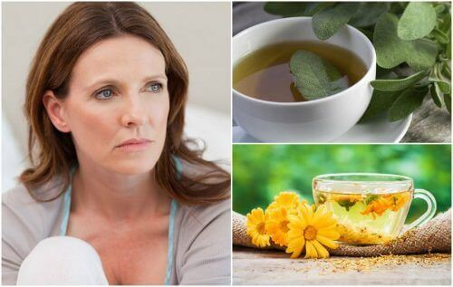 Reduce Menopause Hot Flashes with 5 Remedies - Step To Health