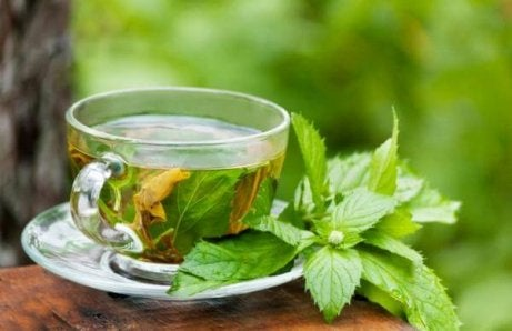 Mint and boldo infusion may help treat fatty liver disease.