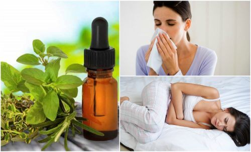 8 Natural Medicinal Uses for Oregano Oil