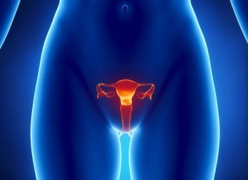 5 Secondary Effects of Ovarian Cancer