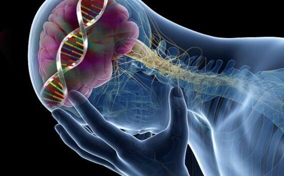 9 Surprising Effects of Low Serotonin Levels