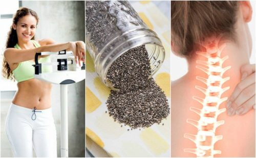 10 Great Benefits of Chia Seeds