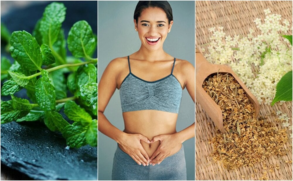 Care for Your Digestion with 6 Healing Plants