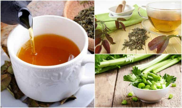 5 Herbal Remedies that Help Stimulate Your Lymphatic System