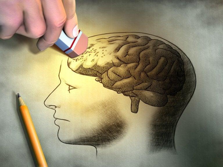 Tips for a Sharper Short-Term Memory