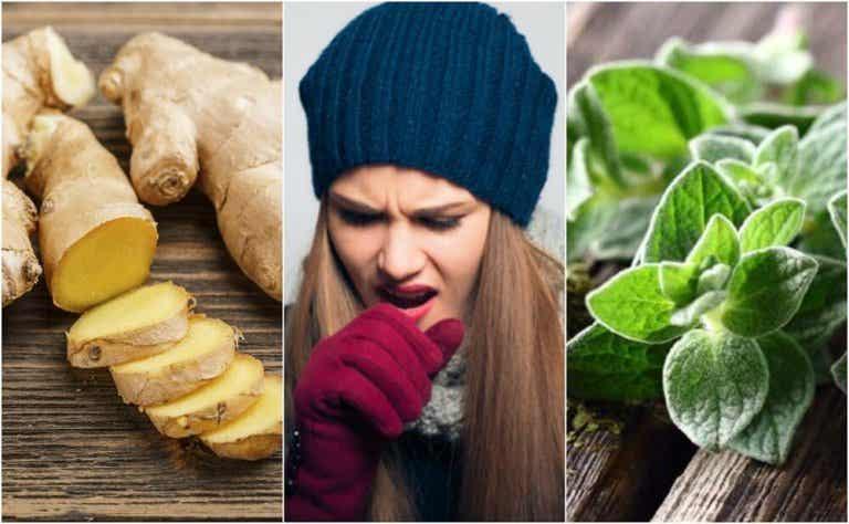 5 Plant Remedies that Help You Get Rid of Phlegm