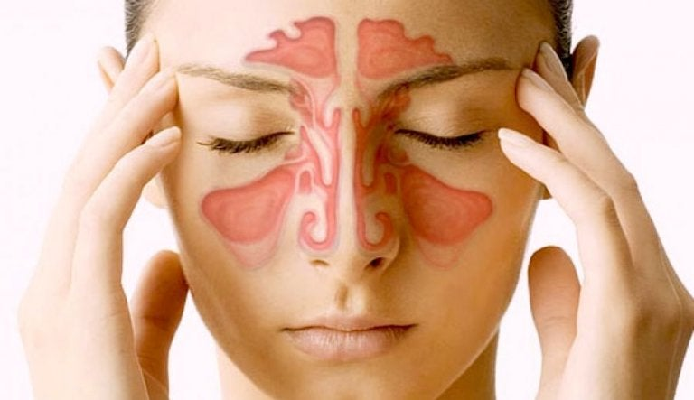 Paranasal Sinuses: 5 Things You Should Know