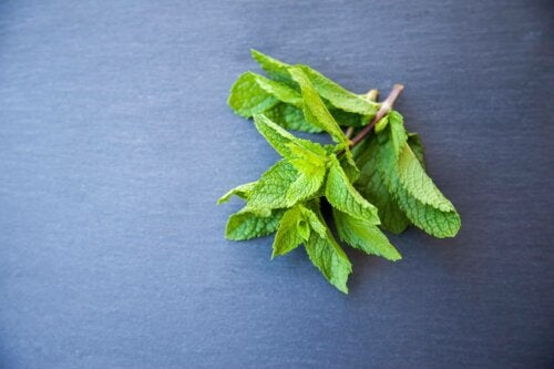 A sprig of mint.