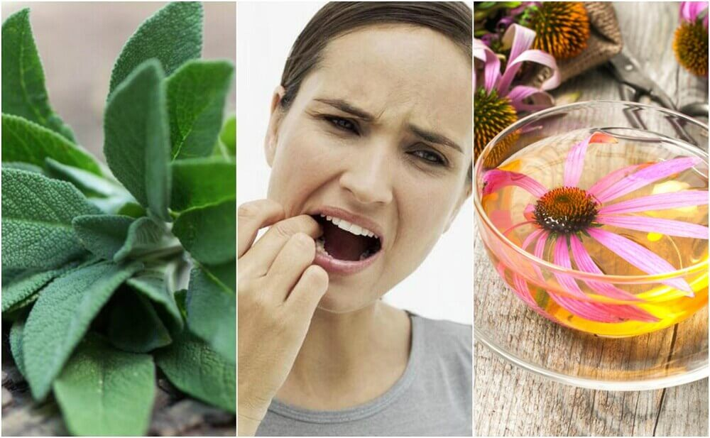 Fight Gingivitis with These 5 Natural Remedies