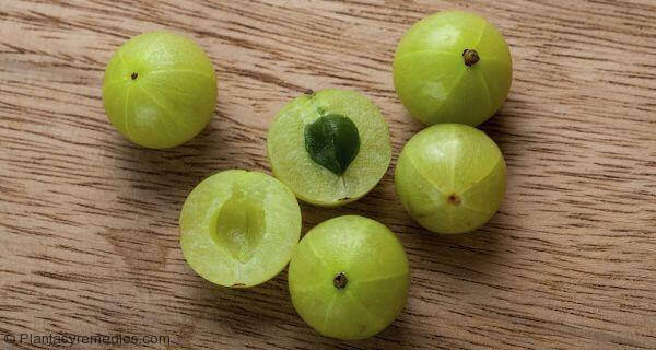 Several gooseberries on a table.