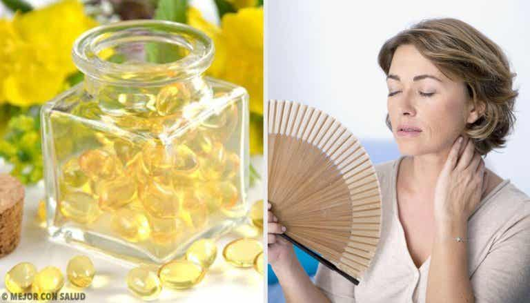 What is Evening Primrose and What are its Benefits?