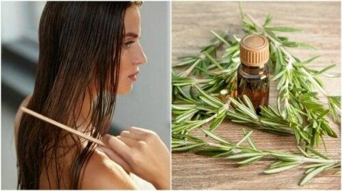 Five Wonderful Hair Benefits of Rosemary