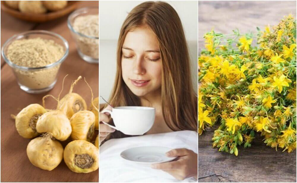 5 Medicinal Plants that Increase Sex Drive