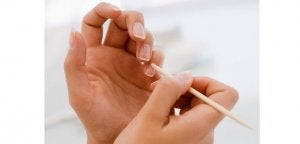 cuticles