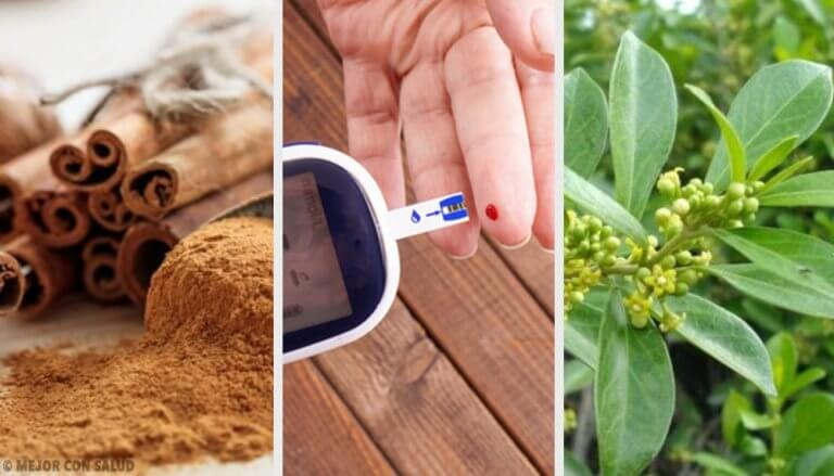5 Medicinal Plants for Diabetes
