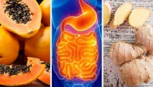 Fruits and Herbs to Soothe Digestion