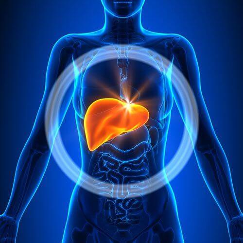 inflamed liver