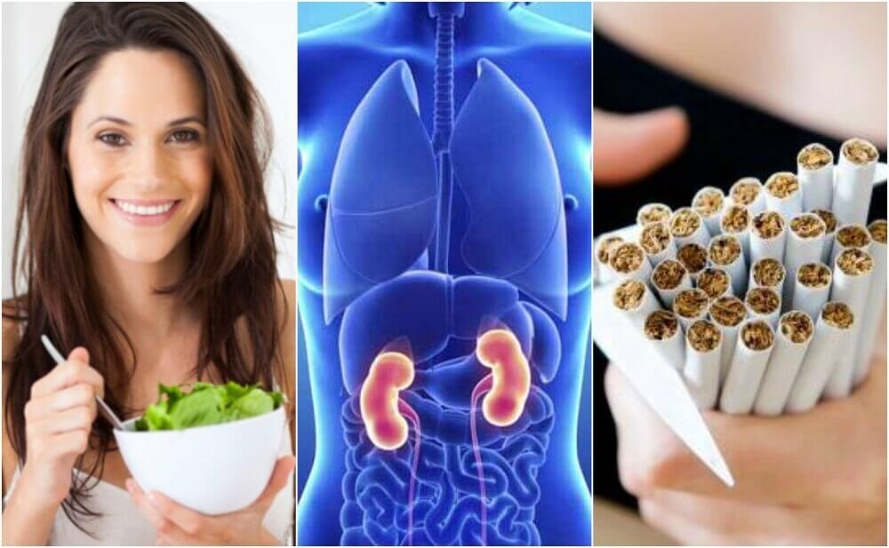6 Basic Care Tips to Protect Your Kidneys