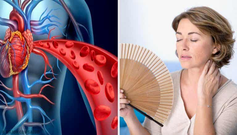 How Menopause Affects Heart Health