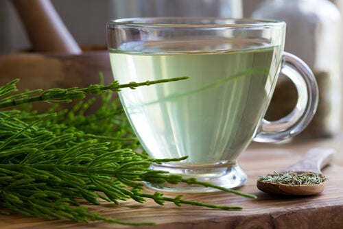 Cup of horsetail tea on a table