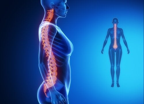 Pain in the lower part of the spine