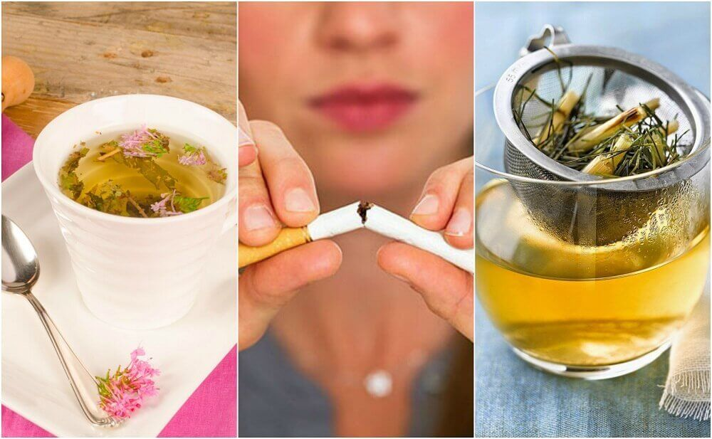 How to Calm Tobacco Cravings with 5 Plant-Based Teas
