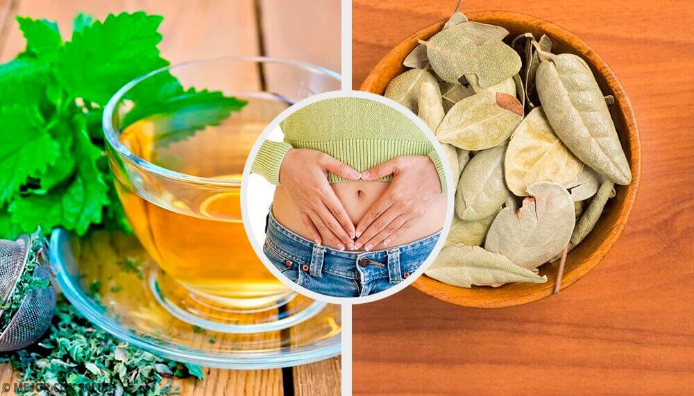 Five Herbs to Improve Digestive Problems