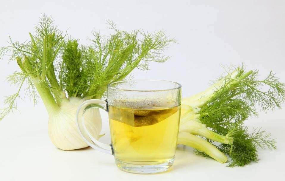 Fennel tea with fresh leaves