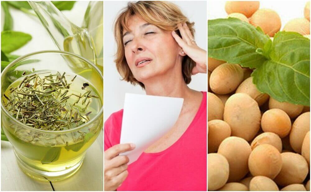 5 Natural Products to Manage Menopause