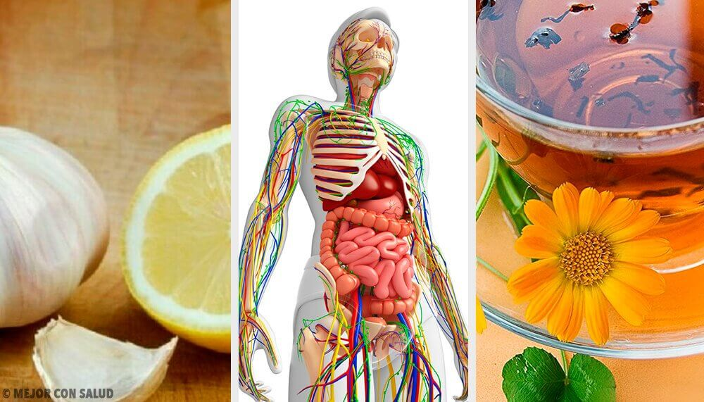 Six Natural Remedies to Cleanse the Lymphatic System