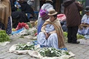 Coca Leaf Vendor