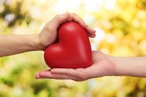 Decrease the Risk of Cardiovascular Diseases