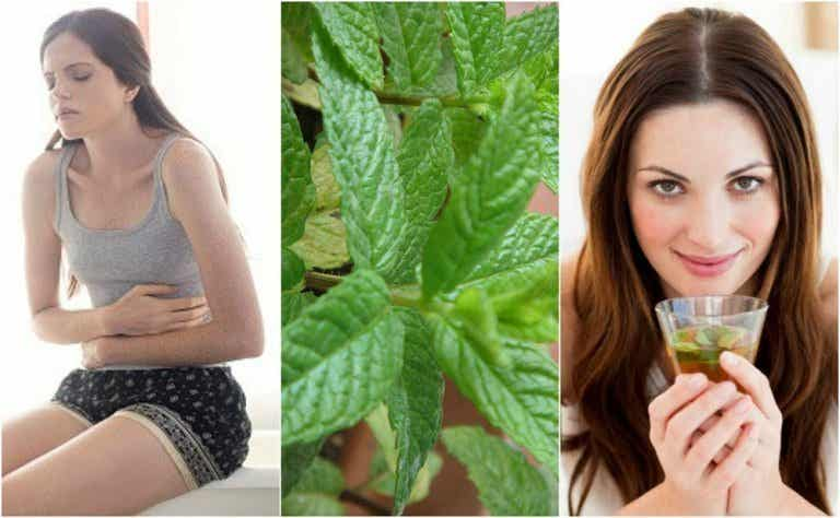 5 Homemade Mint Remedies that You're Going to Love