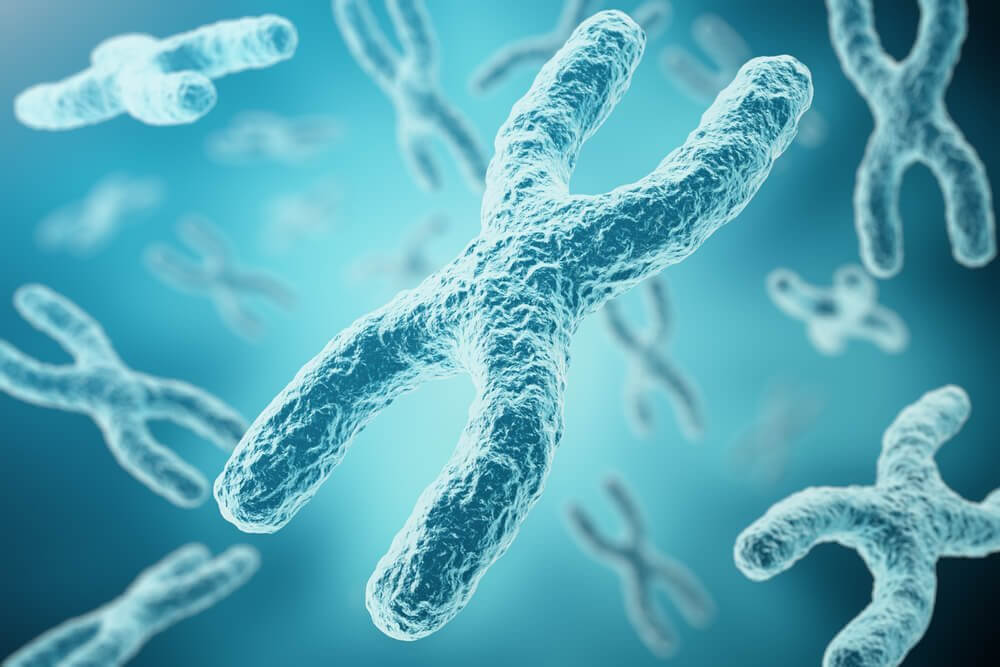 How does the X chromosome inactivation process happen?
