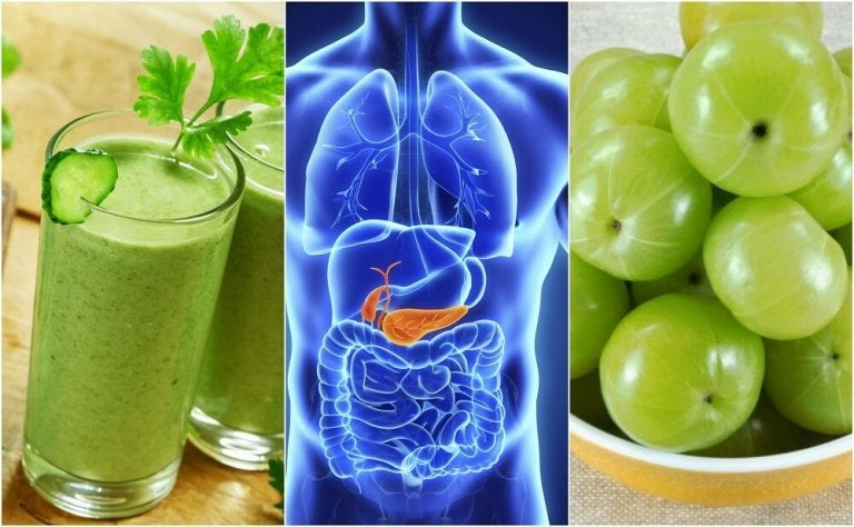 Cleanse Your Pancreas with These 5 Natural Remedies