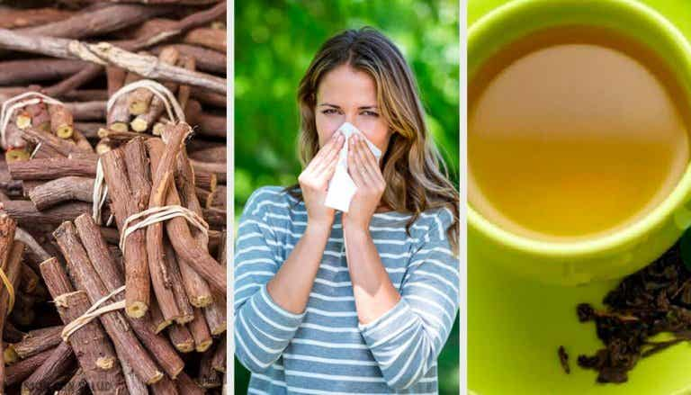 4 Natural Remedies To Fight Against Rhinitis