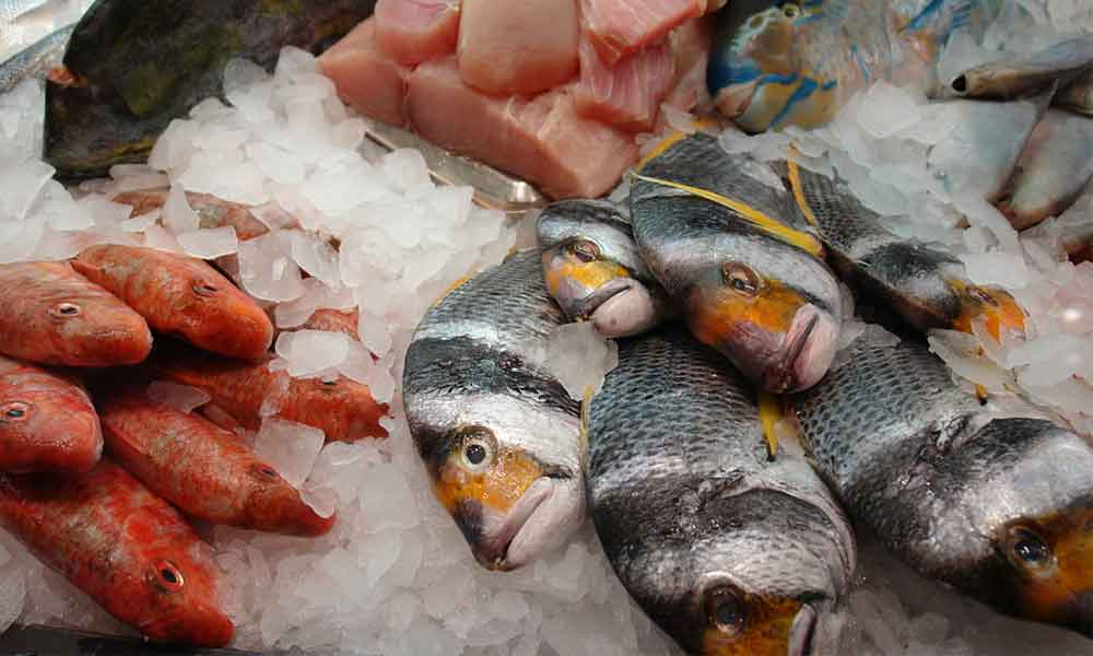 Some rotten seafood on ice.