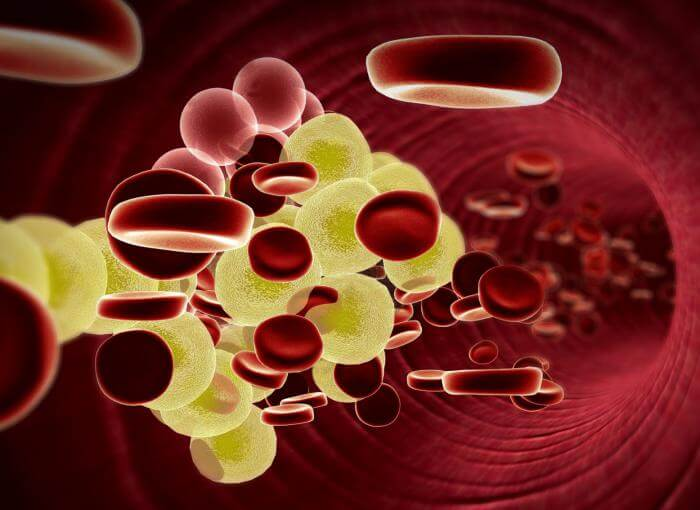 Your cholesterol levels will reduce three times