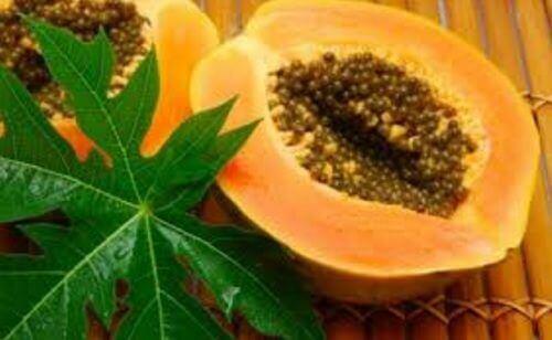 papaya and papaya leaves