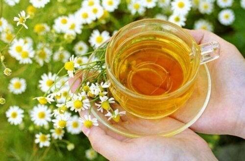 chamomile tea for hair